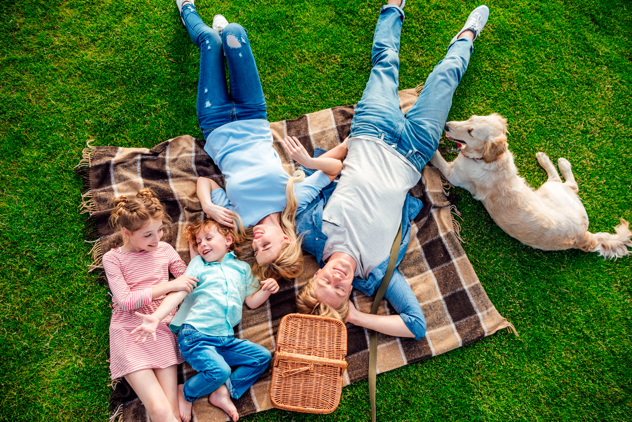 North Meck NC | Lawn Care Services by Pine Valley Turf