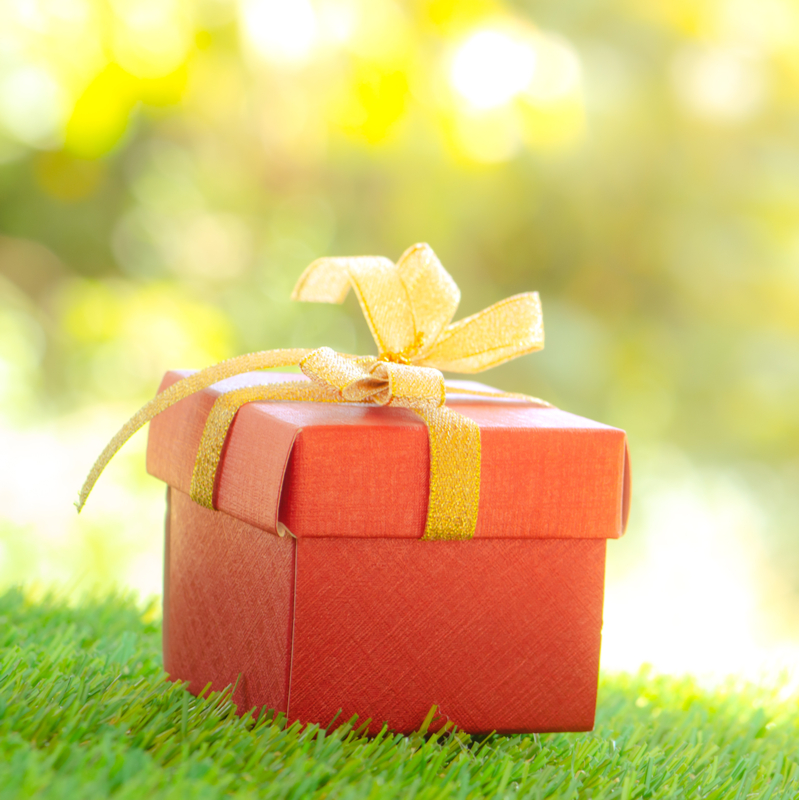 A Lawn Fertilizer Program is the Perfect Holiday Gift for Lawn Lovers