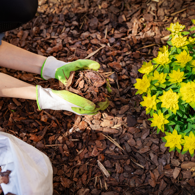 4 Reasons to Add Mulch to Your Landscaping This Spring