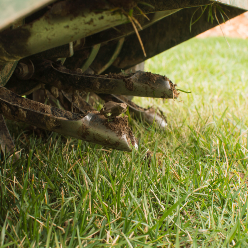 Give Your North Carolina Lawn a Boost With Core Aeration